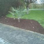 IMG520.jpDonovan Jardins - Plantations